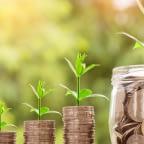 invest credit card cash rewards