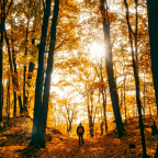 Why fall is the most important thing for your personal finances